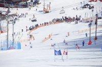 zjazd narciarski